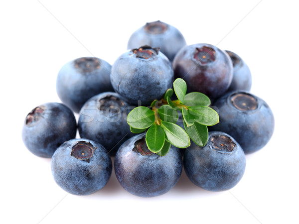 Juicy blueberry with leaves Stock photo © Dionisvera