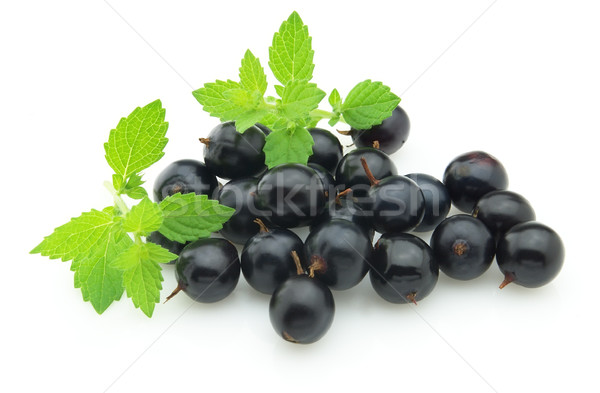 Stock photo: Blackcurrant with melissa