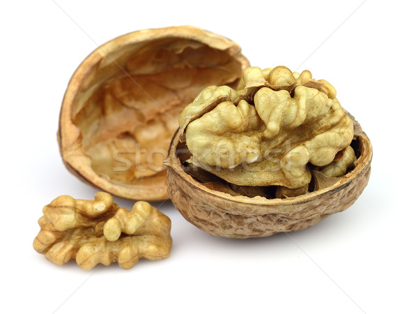 Walnuts on a white background Stock photo © Dionisvera