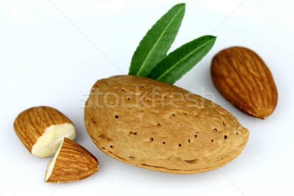 Dried almond with kernel Stock photo © Dionisvera