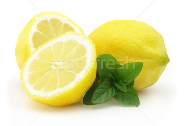 Mint with fresh lemon Stock photo © Dionisvera