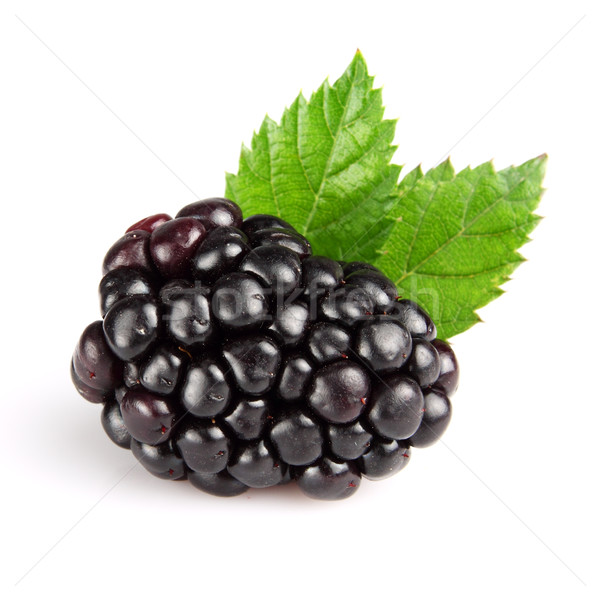 Blackberry with leaves Stock photo © Dionisvera