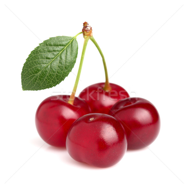 Fresh cherry with leaf Stock photo © Dionisvera