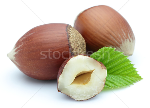Hazelnuts with leaves Stock photo © Dionisvera