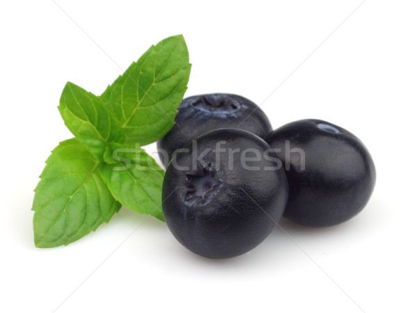 Menthe poivrée myrtille fruits santé vert médecine Photo stock © Dionisvera