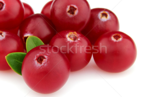 Cranberry  Stock photo © Dionisvera