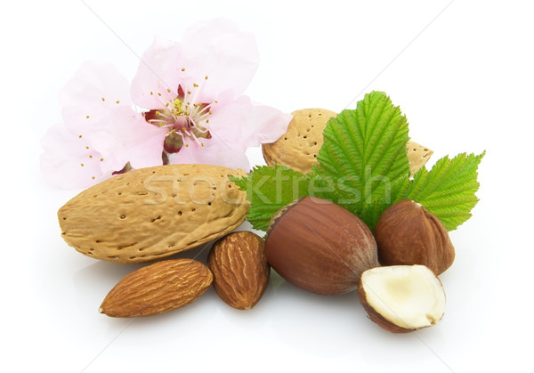 Fresh nuts Stock photo © Dionisvera