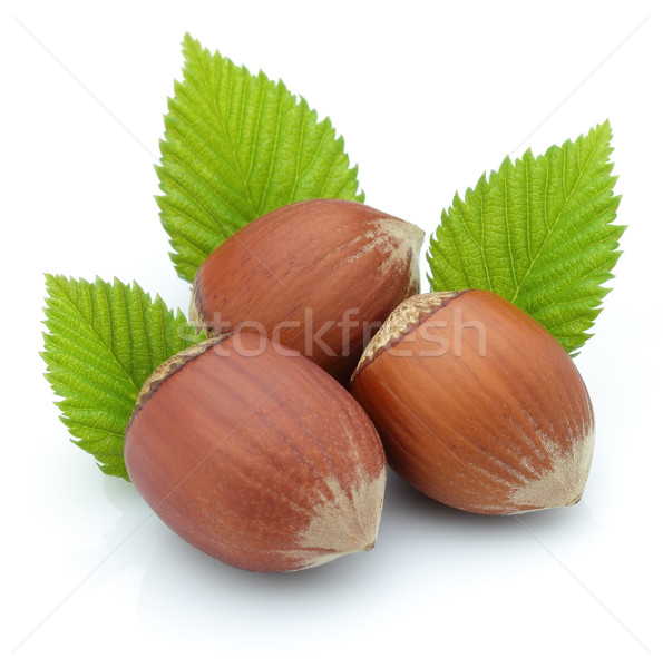 Hazelnuts with leaves Stock photo © Dionisvera