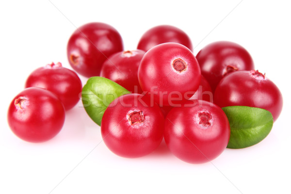 Ripe cranberry with leaves Stock photo © Dionisvera