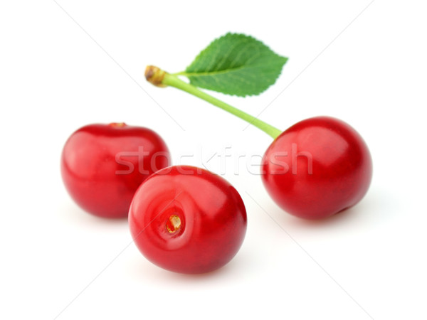 Cherry with leaves Stock photo © Dionisvera