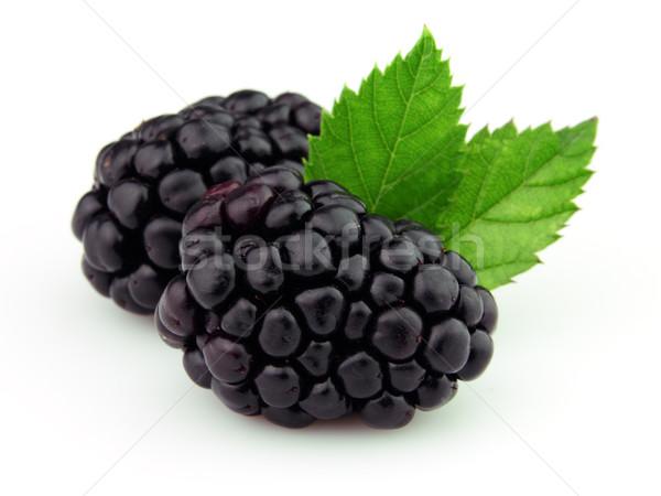 Ripe blackberry Stock photo © Dionisvera