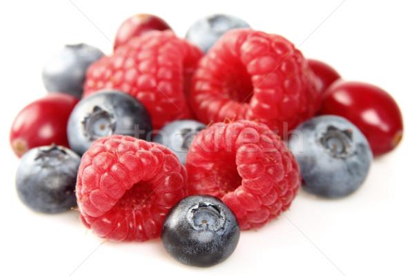 Dolce frutti di bosco primo piano natura medicina rosso Foto d'archivio © Dionisvera