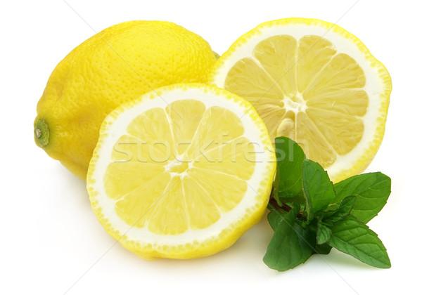 Citron menthe poivrée fraîches feuille fruits vert Photo stock © Dionisvera