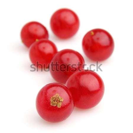 Groseille rouge blanche objets Photo stock © Dionisvera