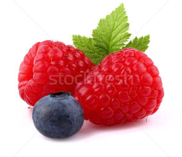 Raspberry with blueberry Stock photo © Dionisvera