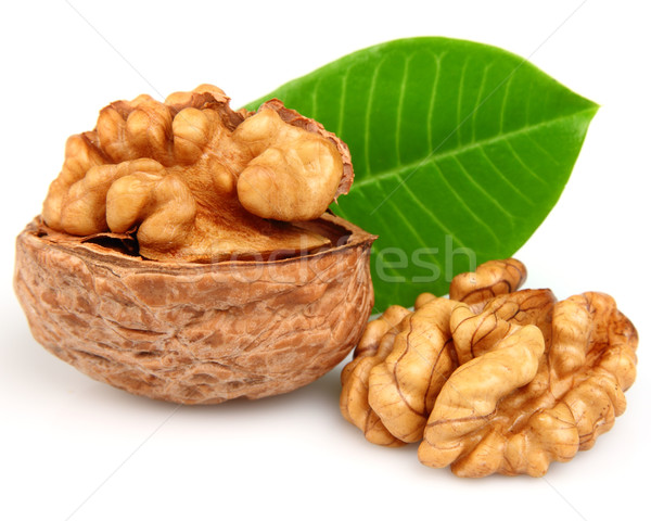 Dried walnuts  Stock photo © Dionisvera