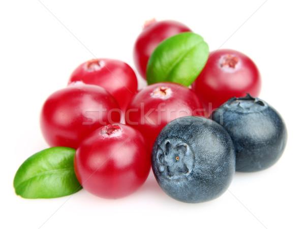 Fresche Berry foglie mirtillo salute Foto d'archivio © Dionisvera