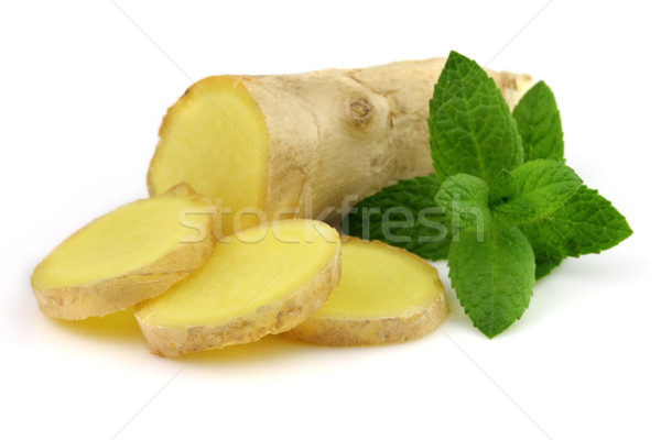 Ginger root with peppermint Stock photo © Dionisvera