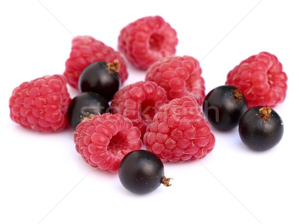 Raspberry with blackcurrant Stock photo © Dionisvera