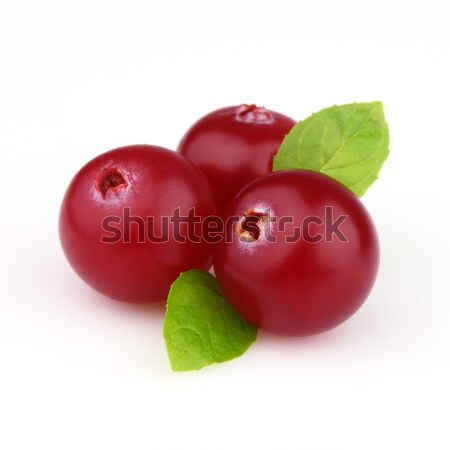 Cowberry with mint Stock photo © Dionisvera