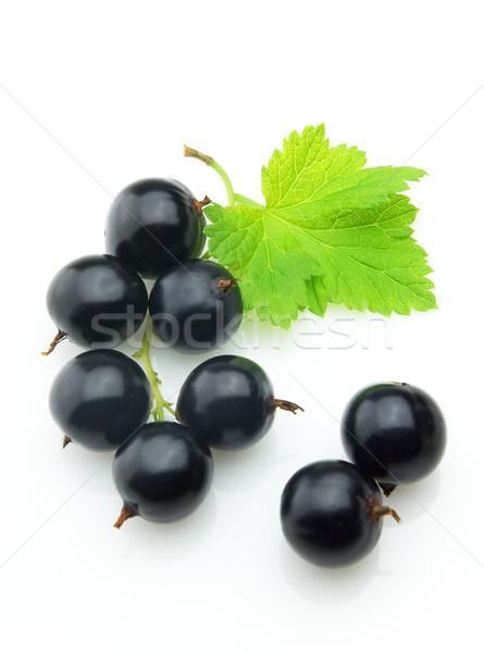 Natura foglie nero impianto dolce Berry Foto d'archivio © Dionisvera