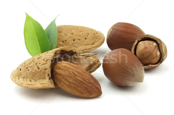 Almonds with filbert Stock photo © Dionisvera