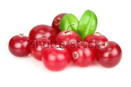 Ripe cowberry Stock photo © Dionisvera