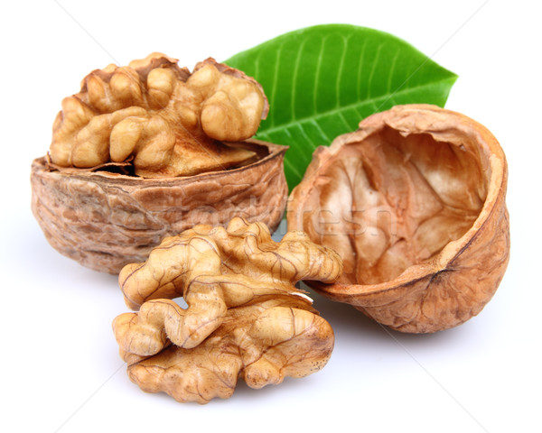 Walnuts with leaves Stock photo © Dionisvera