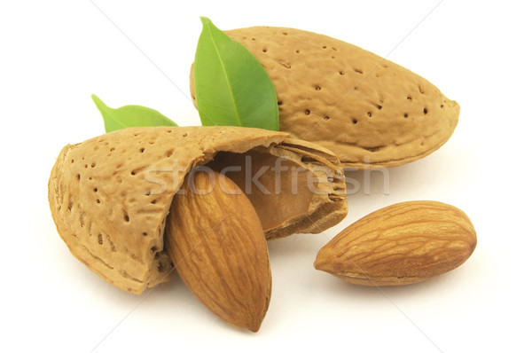 Amande nature shell objet écrou régime alimentaire Photo stock © Dionisvera