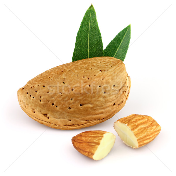Dried almond with leaves Stock photo © Dionisvera