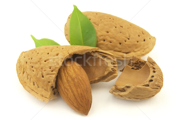 Almond Stock photo © Dionisvera