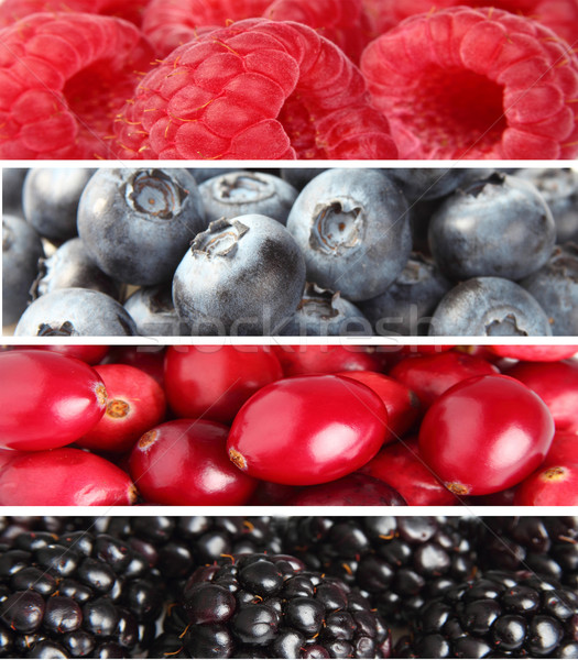 Collage from fresh berries Stock photo © Dionisvera