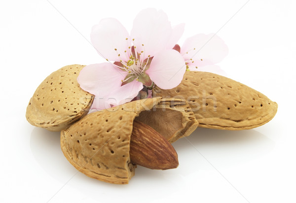 Almonds with flowers Stock photo © Dionisvera