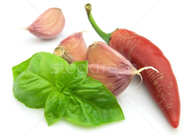 Spices Stock photo © Dionisvera