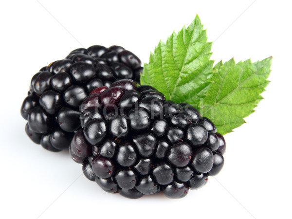 Fresh blackberry Stock photo © Dionisvera