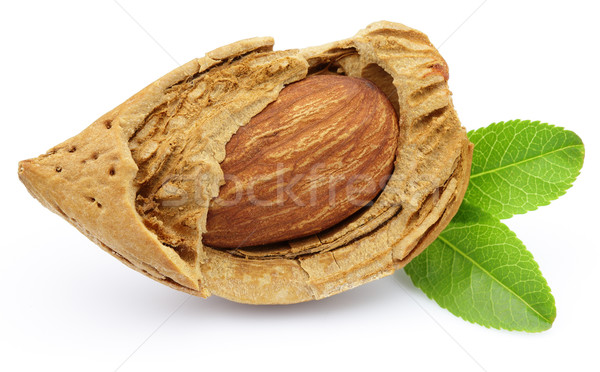 Almonds with leaves Stock photo © Dionisvera