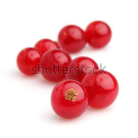 Słodkie czerwony porzeczka biały obiektów Zdjęcia stock © Dionisvera
