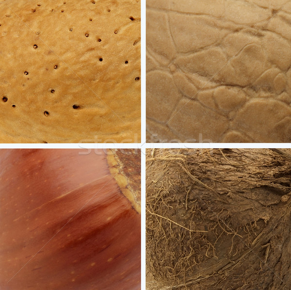 Nuts texture Stock photo © Dionisvera