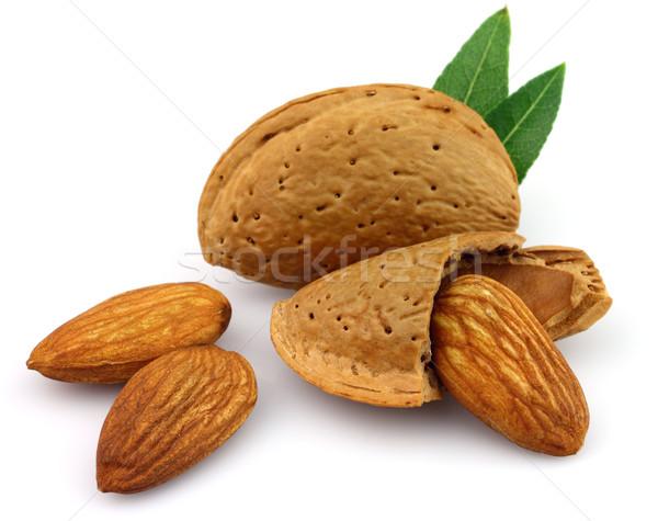 Dried almonds  Stock photo © Dionisvera