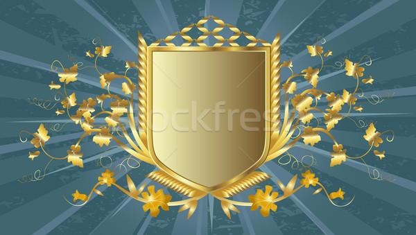 golden shield Stock photo © dip
