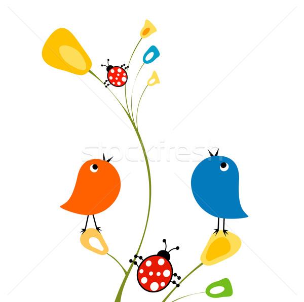 Aves flor natureza projeto pássaro engraçado Foto stock © dip