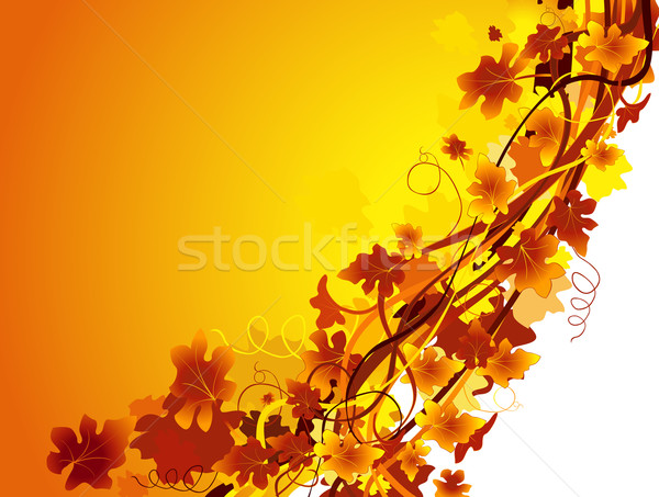 autumn background Stock photo © dip