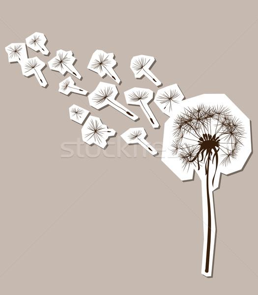Silhuetas dandelion vento flor luz arte Foto stock © dip