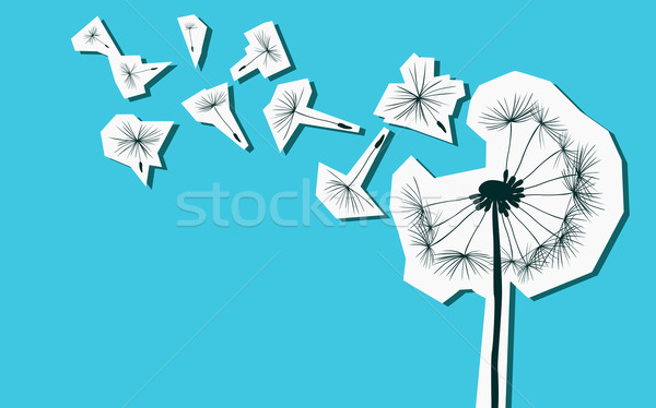 silhouettes of dandelion in the wind Stock photo © dip