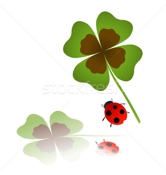 ladybird and shamrock leaf  Stock photo © dip