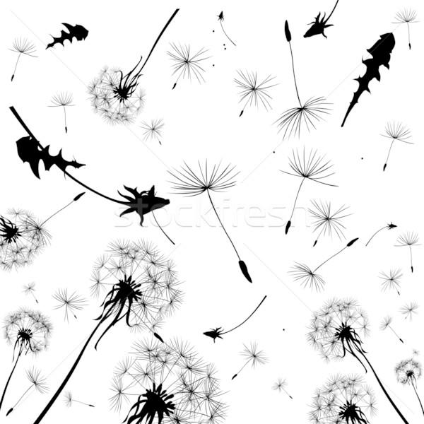 Leão silhuetas três vento flor luz Foto stock © dip