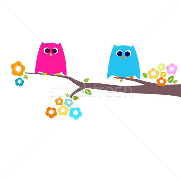 Corujas casal ramo crianças natureza criança Foto stock © dip