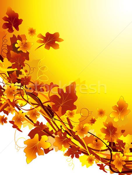 autumn background Stock photo © dip