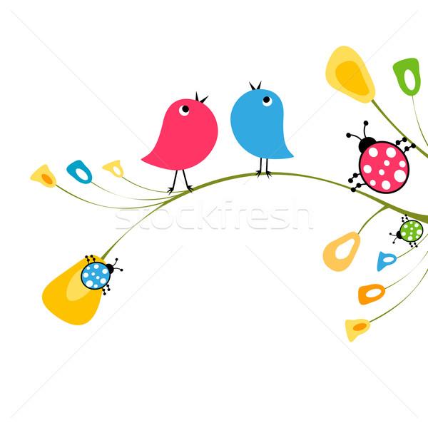 Madarak virág természet terv madár vicces Stock fotó © dip