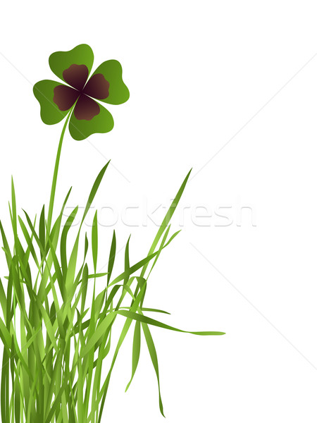 shamrock leaf in grass Stock photo © dip